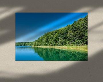 Landscape on a lake with trees van Rico Ködder