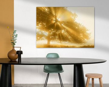 Stralende boom van Karla Leeftink
