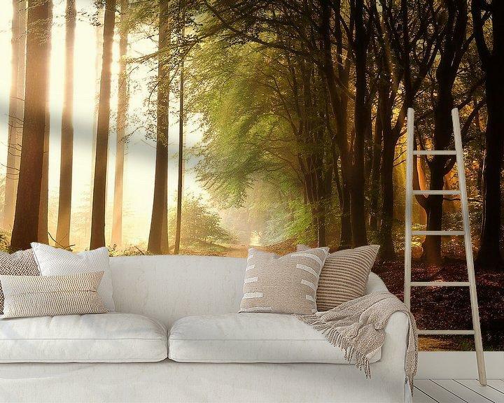 Sfeerimpressie behang: Ochtendzon van Rigo Meens
