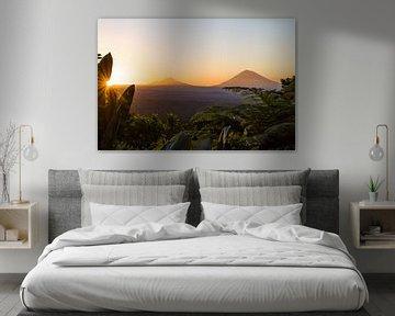 Tropical sunrise von Bart Hageman