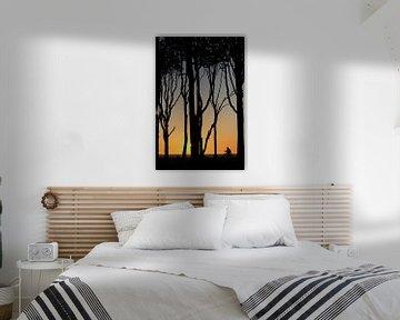 Sonnenuntergang an der Ostsee von Jana Behr