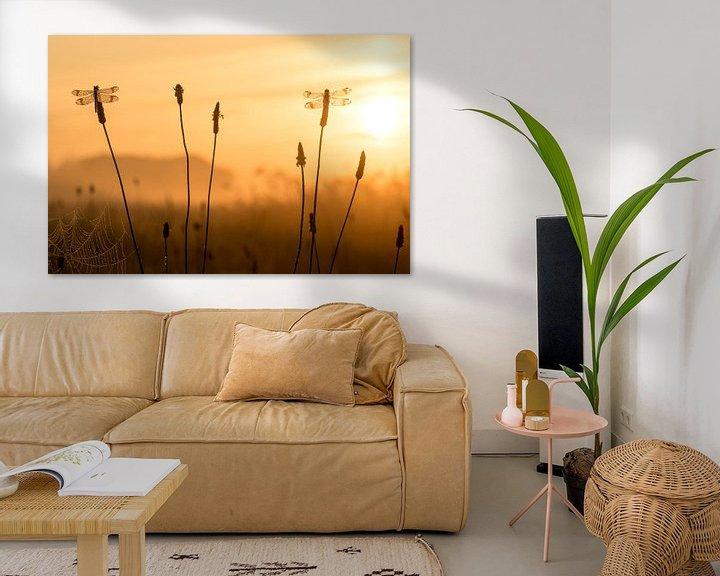 Sfeerimpressie: Bandheidelibellen bij zonsopkomst van Erik Veldkamp