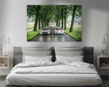 Porsche 911 R vs. Aston Martin V12 S von Sytse Dijkstra