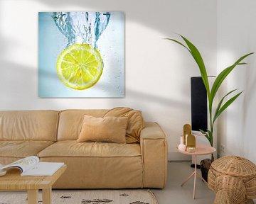 Lemon Splash sur Silvio Schoisswohl
