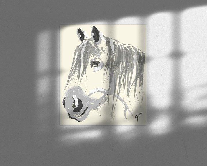 Sfeerimpressie: Paard Big Jack van Go van Kampen