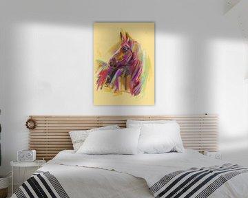 Paard True Colors