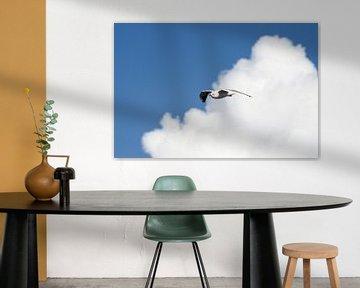 Meeuw in de wolken van Natasja Claessens