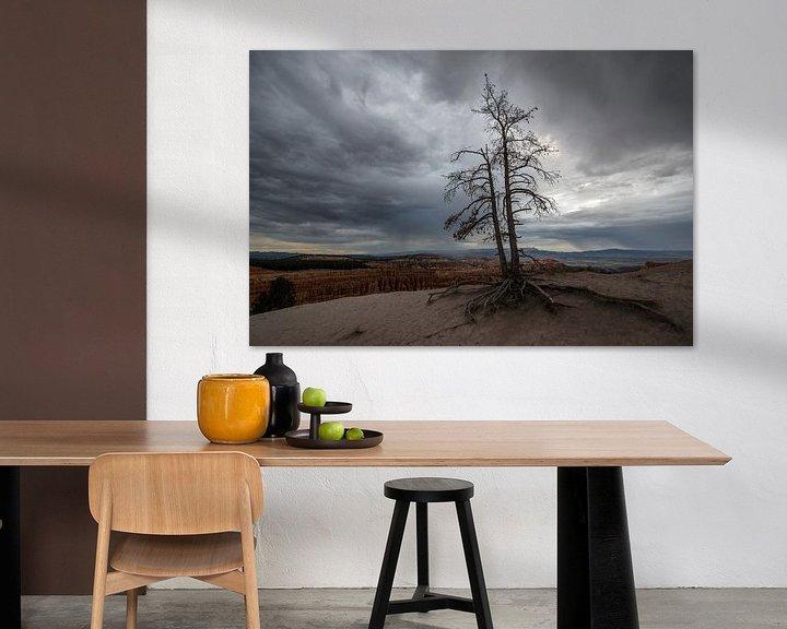 Sfeerimpressie: Bryce Canyon N.P. van Tilly Meijer