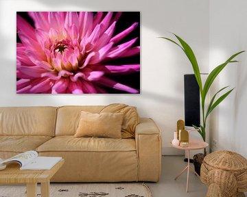 It's a pink Dahlia.. van LHJB Photography
