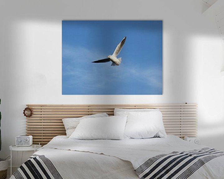 Sfeerimpressie: vrij als een vogel / free as a bird van Pascal Engelbarts