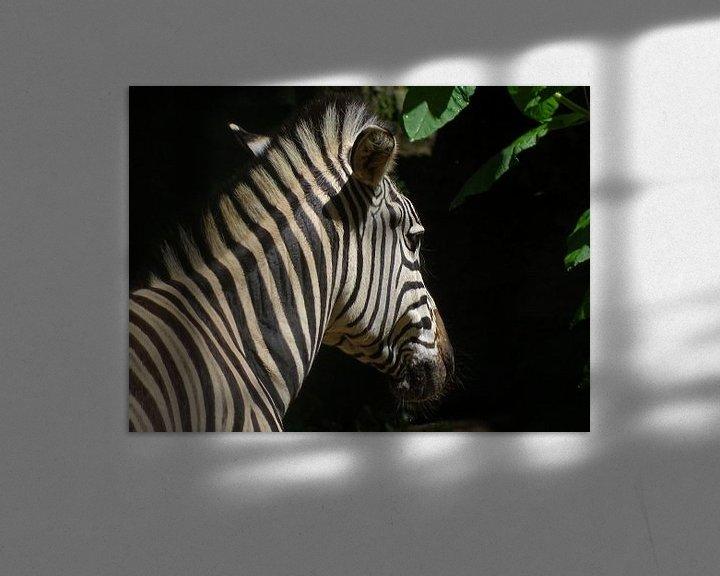 Beispiel: Zebra in sunshine von Sandra de Moree