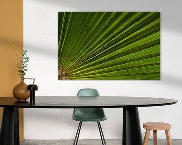 Abstract by nature van Ellen van den Doel
