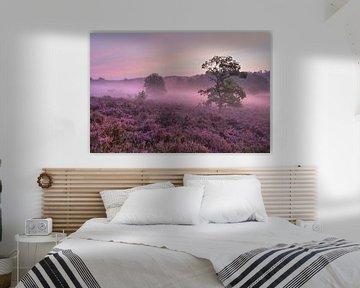 In a purple haze van Francois Debets