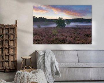 heidelandschap in Limburg van Francois Debets