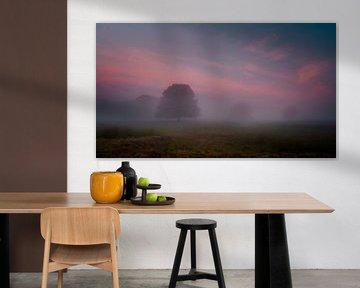 Mistig kleurrijke sfeeropname zonsopkomst van Richard Reuser