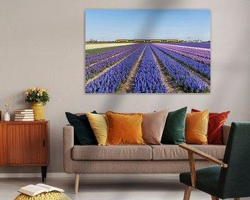 Hollands landschap sur Martin Winterman