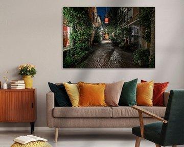 Urban Jungle van Scott McQuaide