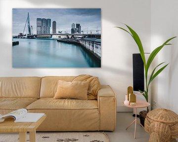 Rotterdam with Erasmusbridge von Ilya Korzelius