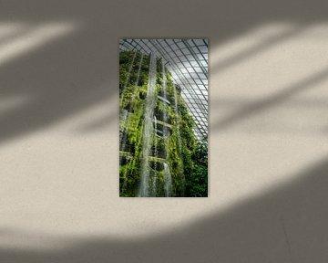Cloud Forest - Singapore van Raymond Gerritsen