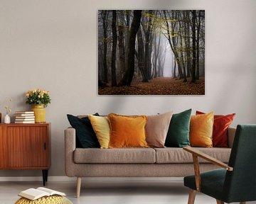 Gehe unter den gelben Blättern hindurch von Tvurk Photography