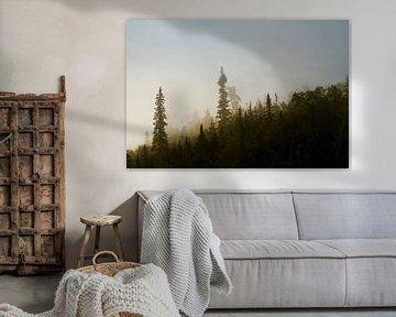 Forêt Noir van Renald Bourque