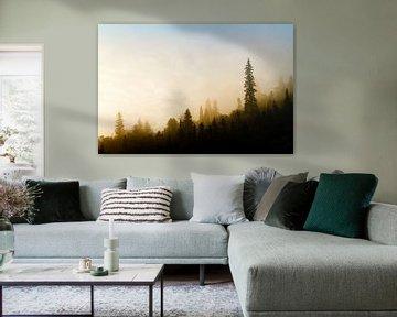 Forêt Noir II van Renald Bourque