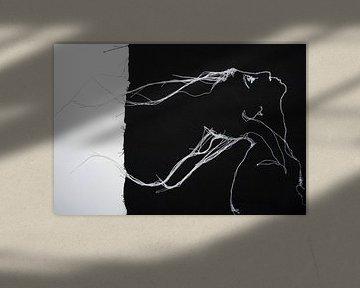 Identiteit  / Identity  / Identité van Kim Rijntjes
