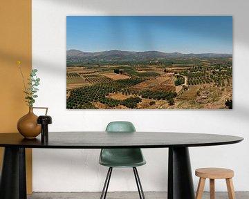 Landschap Kreta van Gonnie van Hove