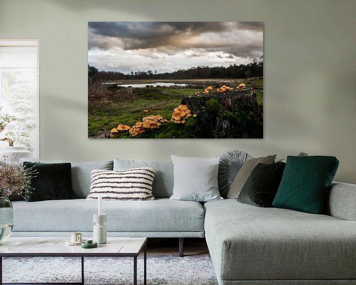 Sfeerimpressie: landschap met paddestoelen  van Rubin Versigny
