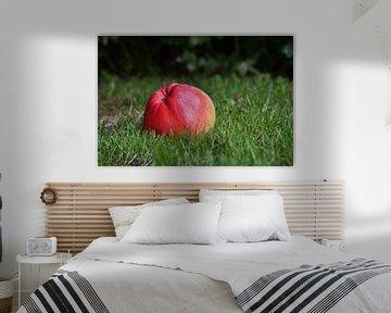 One apple a day keeps the doctor away van Henk de Boer