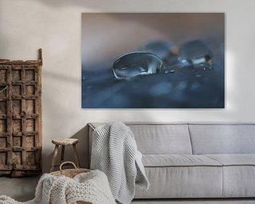 Watching the storm van Carla Mesken-Dijkhoff