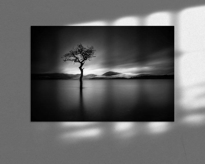 Beispiel: The Lonely Tree in BNW von Valerie Leroy Photography