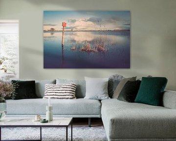 Hoog water in de uiterwaarden van de rivier de IJssel van Fotografiecor .nl