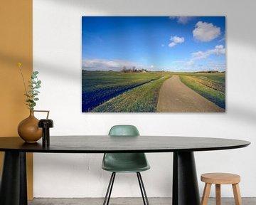 Nederlands polder landschap op Texel van Fotografiecor .nl