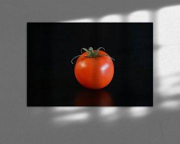tomaat van Fraukje Vonk