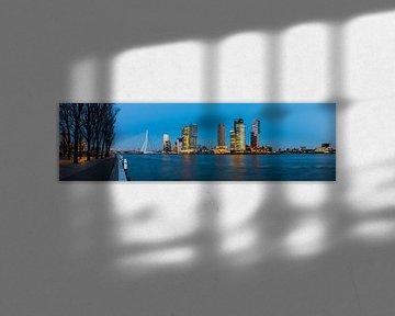 Rotterdam Panoramisch uitzicht Rotterdam Westerkade van Daan Kloeg