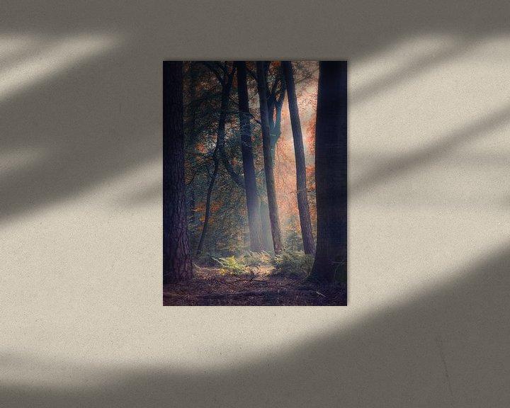 Sfeerimpressie: Transitions 3/3 (Herfst impressie) van Remco Lefers