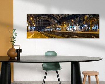 Panorama La gare Haarlem