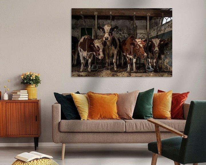 Beispiel: Kühe im alten Kuhstall von Inge Jansen