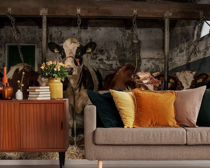 Beispiel fototapete: Kühe im alten Kuhstall von Inge Jansen