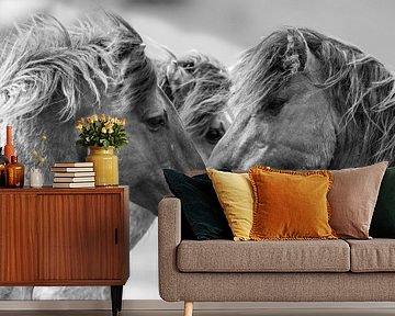 Wilde paarden in de Oostvaardersplassen van Inge Jansen