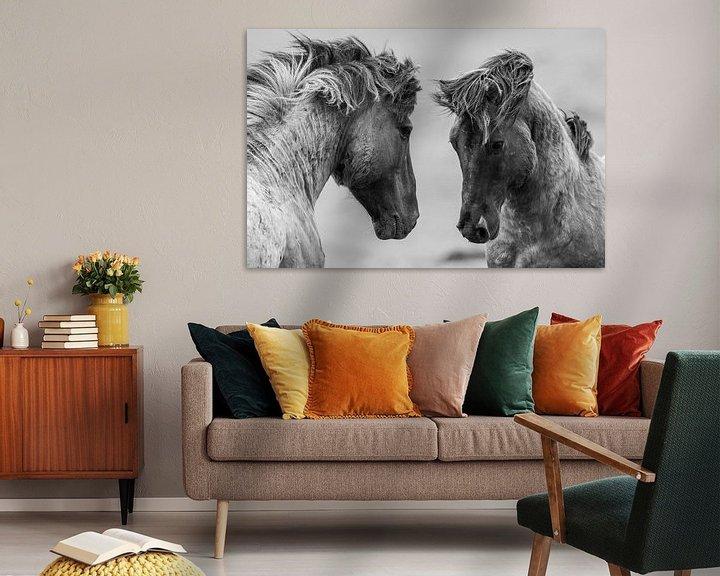 Sfeerimpressie: Vechtende wilde paarden van Inge Jansen