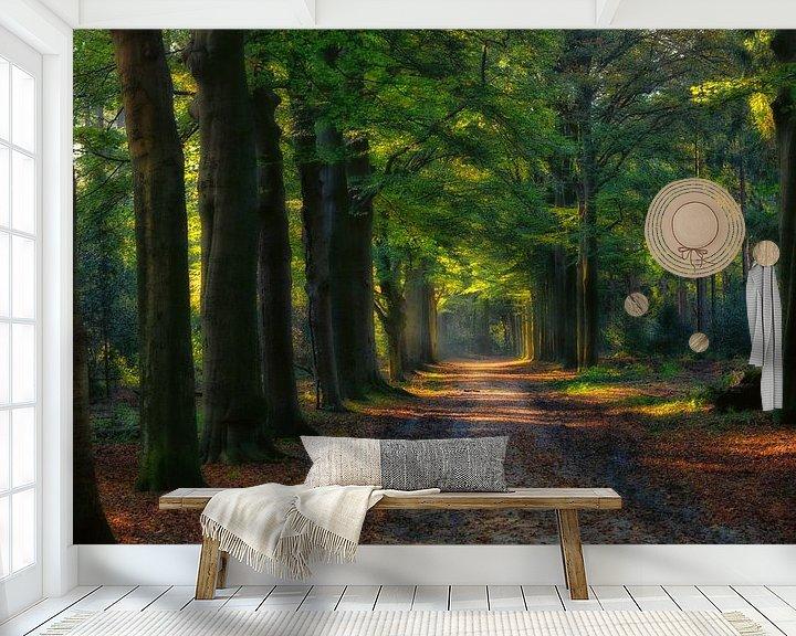 Sfeerimpressie behang: Bos laan in het Baarnse Bos.. van Pascal Raymond Dorland