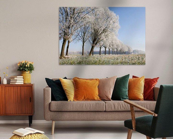 Sfeerimpressie: winterse bomenrij 1 Sint-Michielsgestel van Arnoud Kunst