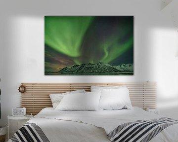 Aurora Borealis boven de Lofoten, Noorwegen van Tilly Meijer