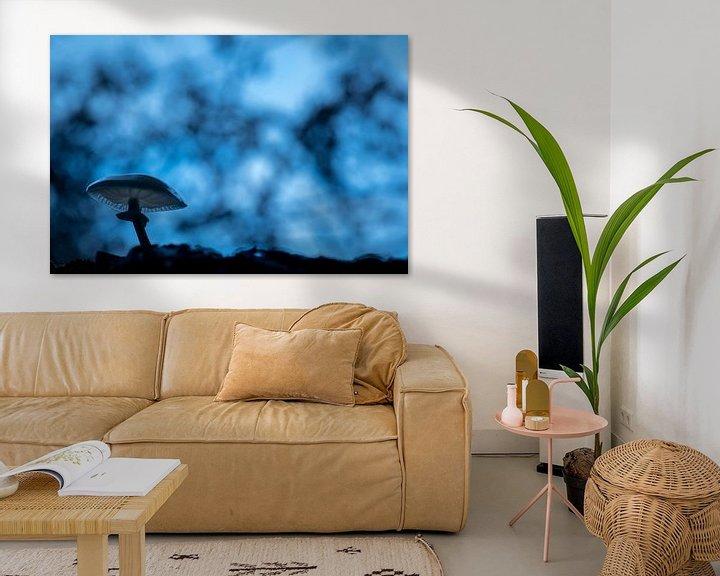 Sfeerimpressie: Porseleinzwam in blauw van Erik Veldkamp
