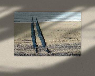 schadow of wings van Natasja Claessens