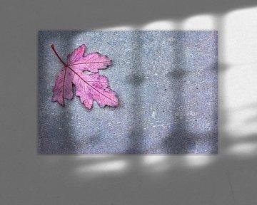 Eikenblad op stenen achtergrond van Artstudio1622