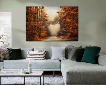 Fall in Love van Lars van de Goor