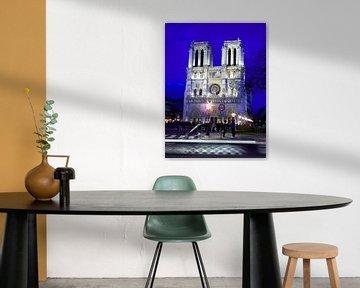 Notre Dame '3of4' van Niels van Houten